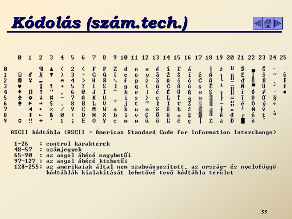 54 c) ASCII kód (American Standard Code for Information Interchange) A mikroszámítógépek kódja, amely 8 bites, így szintén 256 kóddal rendelkezik.