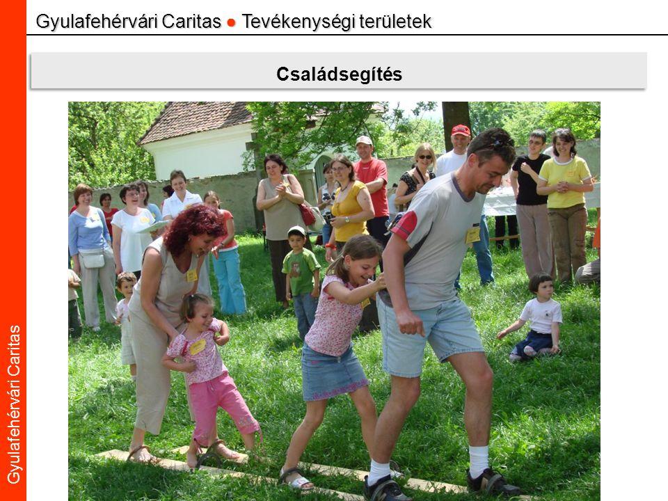 Caritas Alba Iulia Gyulafehérvári Caritas Gyulafehérvári Caritas ● Tevékenységi területek Családsegítés