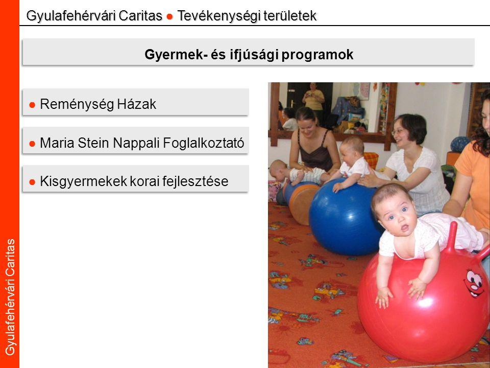 Caritas Alba Iulia Gyulafehérvári Caritas Gyulafehérvári Caritas ● Tevékenységi területek Gyermek- és ifjúsági programok ● Reménység Házak ● Maria Stein Nappali Foglalkoztató ● Kisgyermekek korai fejlesztése