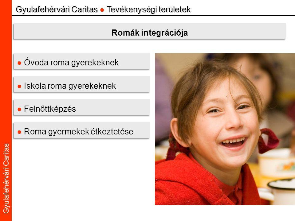 Caritas Alba Iulia Gyulafehérvári Caritas Gyulafehérvári Caritas ● Tevékenységi területek Romák integrációja ● Óvoda roma gyerekeknek ● Iskola roma gyerekeknek ● Felnőttképzés ● Roma gyermekek étkeztetése