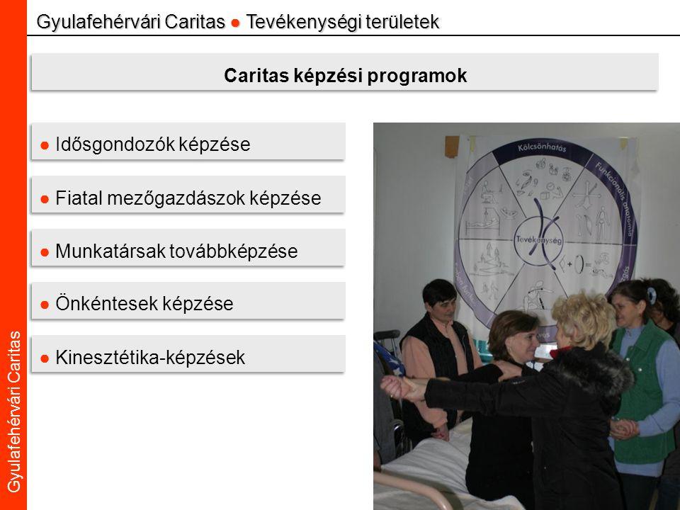 Caritas Alba Iulia Gyulafehérvári Caritas Gyulafehérvári Caritas ● Tevékenységi területek Caritas képzési programok ● Idősgondozók képzése ● Fiatal mezőgazdászok képzése ● Munkatársak továbbképzése ● Önkéntesek képzése ● Kinesztétika-képzések