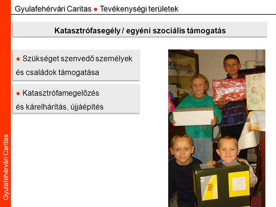 Caritas Alba Iulia Gyulafehérvári Caritas Gyulafehérvári Caritas ● Tevékenységi területek Katasztrófasegély / egyéni szociális támogatás ● Szükséget szenvedő személyek és családok támogatása ● Katasztrófamegelőzés és kárelhárítás, újjáépítés ● Katasztrófamegelőzés és kárelhárítás, újjáépítés