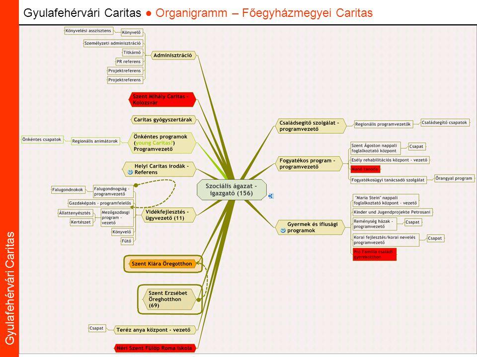 Caritas Alba Iulia Gyulafehérvári Caritas Gyulafehérvári Caritas ● Organigramm – Főegyházmegyei Caritas
