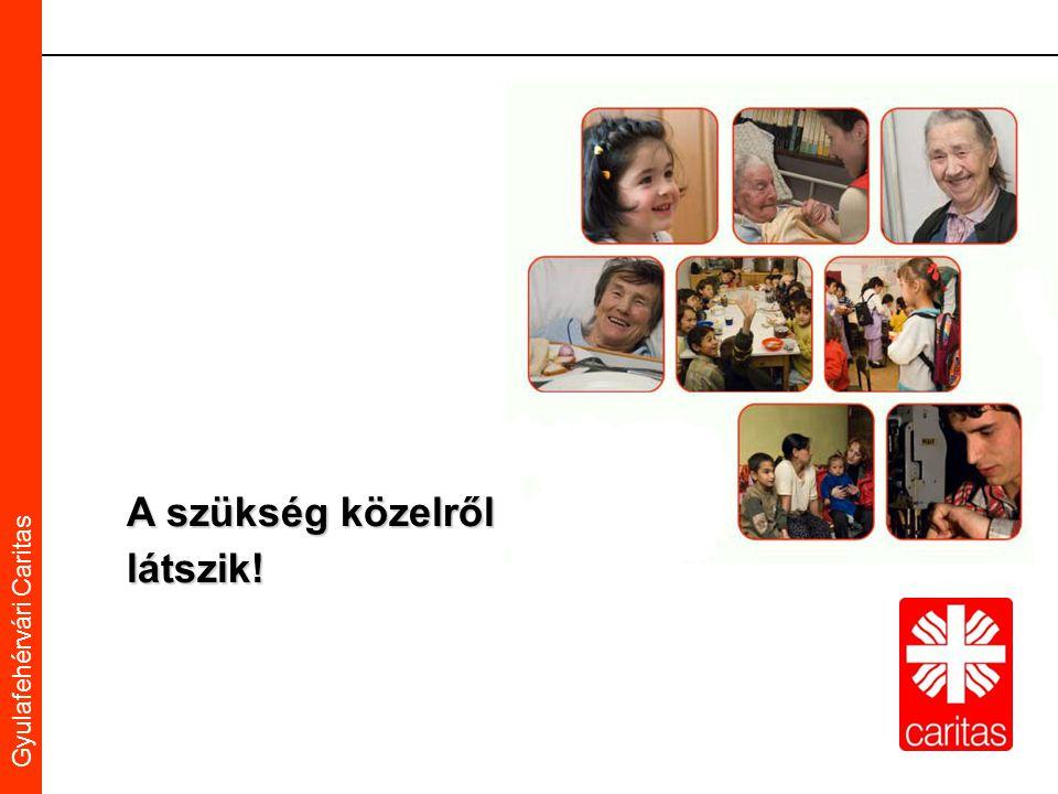 Caritas Alba Iulia Gyulafehérvári Caritas A szükség közelről látszik!