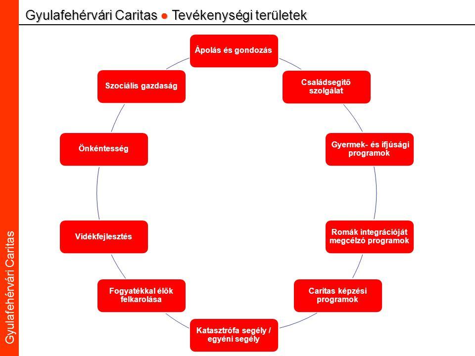 Caritas Alba Iulia Gyulafehérvári Caritas Gyulafehérvári Caritas ● Tevékenységi területek Ápolás és gondozás Családsegítő szolgálat Gyermek- és ifjúsági programok Romák integrációját megcélzó programok Caritas képzési programok Katasztrófa segély / egyéni segély Fogyatékkal élők felkarolása VidékfejlesztésÖnkéntességSzociális gazdaság