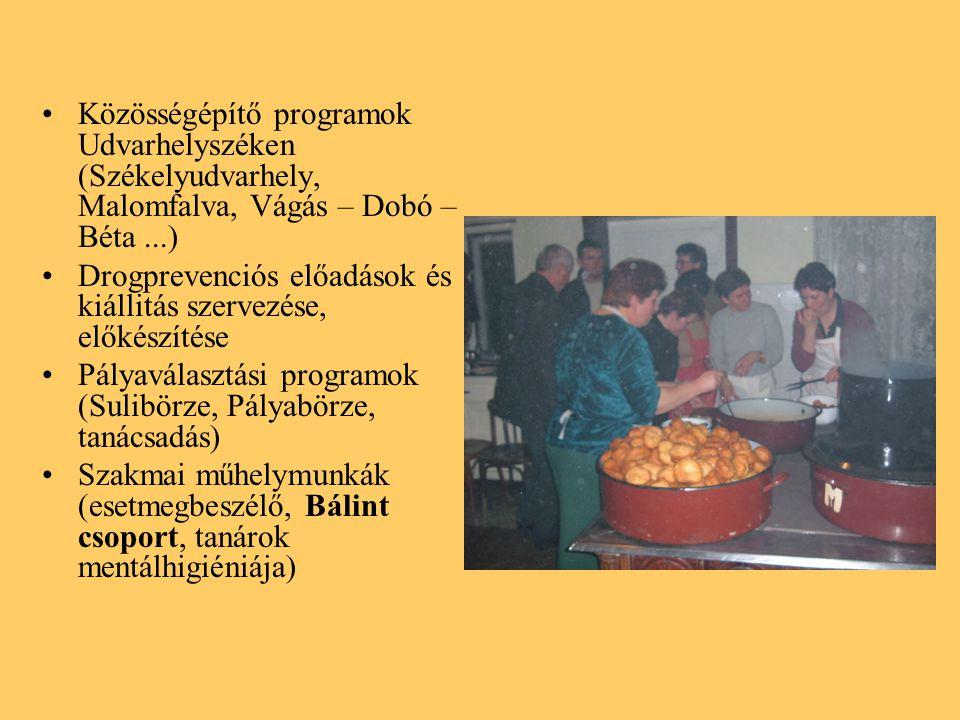 Közösségépítő programok Udvarhelyszéken (Székelyudvarhely, Malomfalva, Vágás – Dobó – Béta...) Drogprevenciós előadások és kiállitás szervezése, előkészítése Pályaválasztási programok (Sulibörze, Pályabörze, tanácsadás) Szakmai műhelymunkák (esetmegbeszélő, Bálint csoport, tanárok mentálhigiéniája)