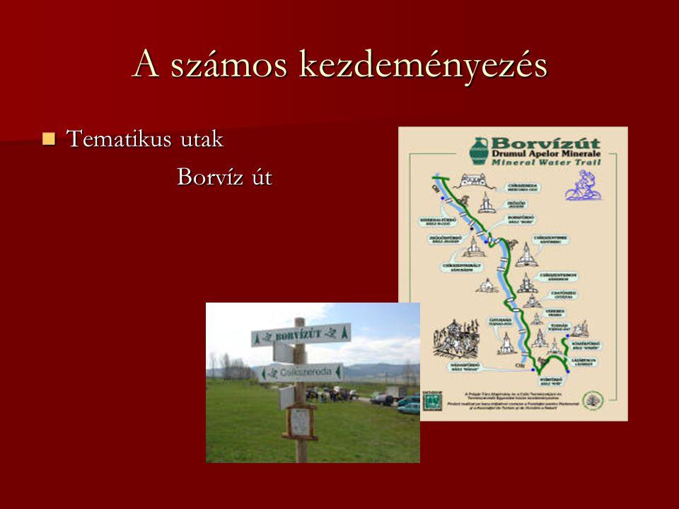 A számos kezdeményezés Tematikus utak Tematikus utak Borvíz út