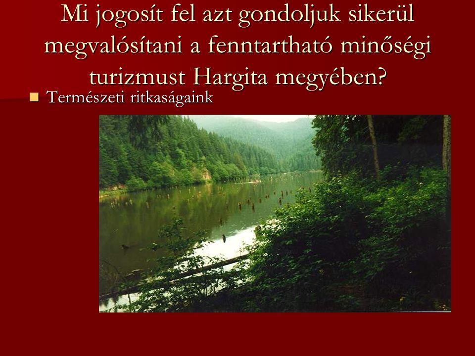 Mi jogosít fel azt gondoljuk sikerül megvalósítani a fenntartható minőségi turizmust Hargita megyében.