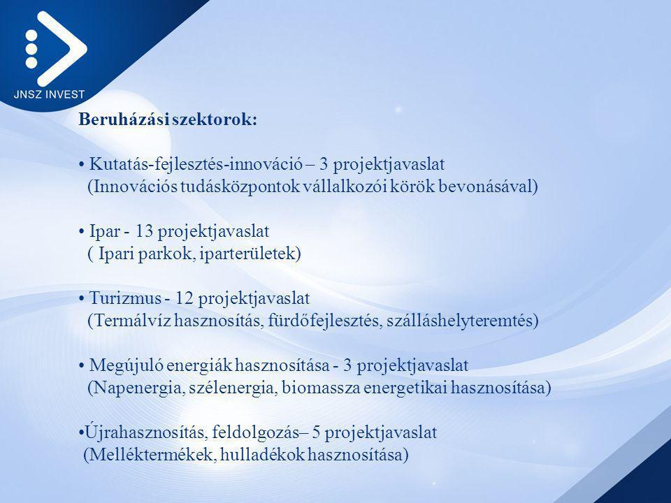 Beruházási szektorok: Kutatás-fejlesztés-innováció – 3 projektjavaslat (Innovációs tudásközpontok vállalkozói körök bevonásával) Ipar - 13 projektjavaslat ( Ipari parkok, iparterületek) Turizmus - 12 projektjavaslat (Termálvíz hasznosítás, fürdőfejlesztés, szálláshelyteremtés) Megújuló energiák hasznosítása - 3 projektjavaslat (Napenergia, szélenergia, biomassza energetikai hasznosítása) Újrahasznosítás, feldolgozás– 5 projektjavaslat (Melléktermékek, hulladékok hasznosítása)