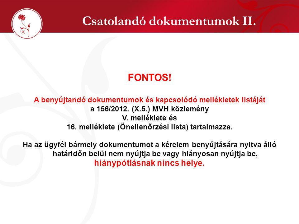 Csatolandó dokumentumok II. FONTOS! A benyújtandó dokumentumok és kapcsolódó mellékletek listáját a 156/2012. (X.5.) MVH közlemény V. melléklete és 16