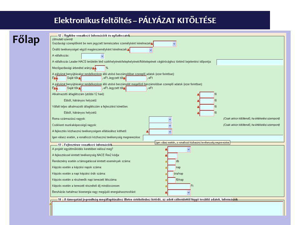 Elektronikus feltöltés – PÁLYÁZAT KITÖLTÉSE Főlap