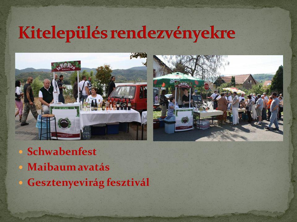 Schwabenfest Maibaum avatás Gesztenyevirág fesztivál