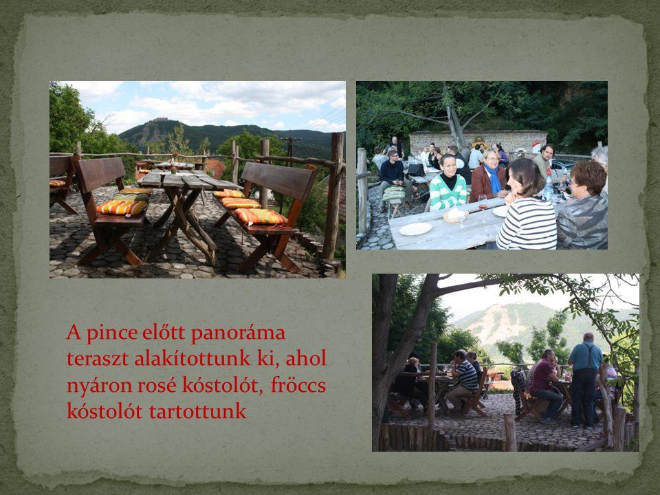 A pince előtt panoráma teraszt alakítottunk ki, ahol nyáron rosé kóstolót, fröccs kóstolót tartottunk