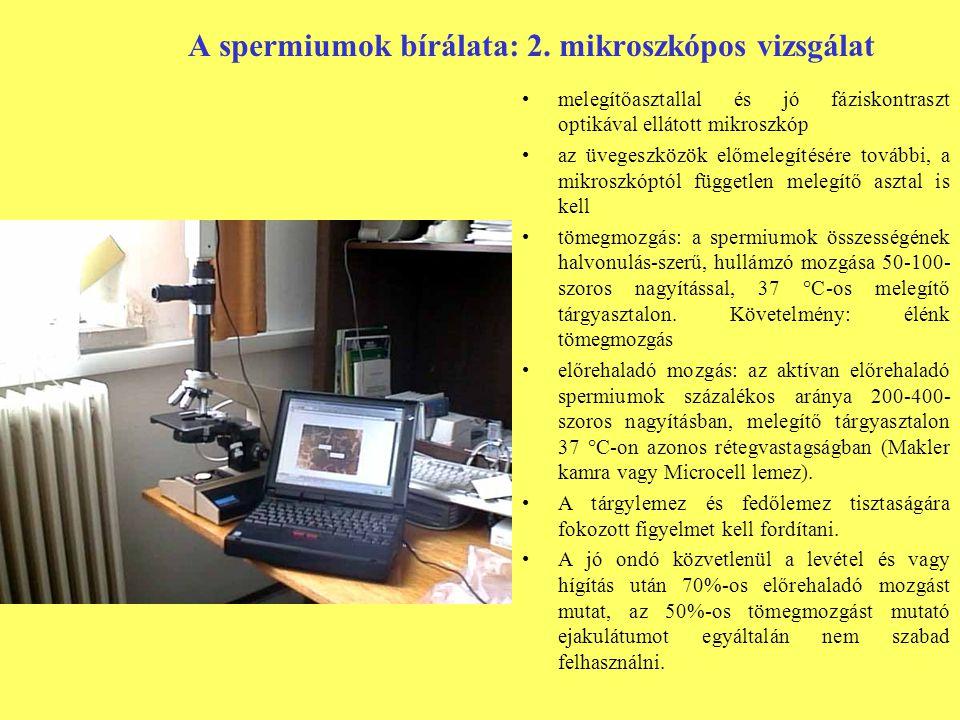 A spermiumok bírálata: 2. mikroszkópos vizsgálat melegítőasztallal és jó fáziskontraszt optikával ellátott mikroszkóp az üvegeszközök előmelegítésére