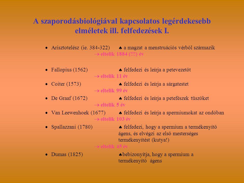 A szaporodásbiológiával kapcsolatos legérdekesebb elméletek ill. felfedezések I.  Arisztotelész (ie. 384-322)  a magzat a menstruációs vérből szárma
