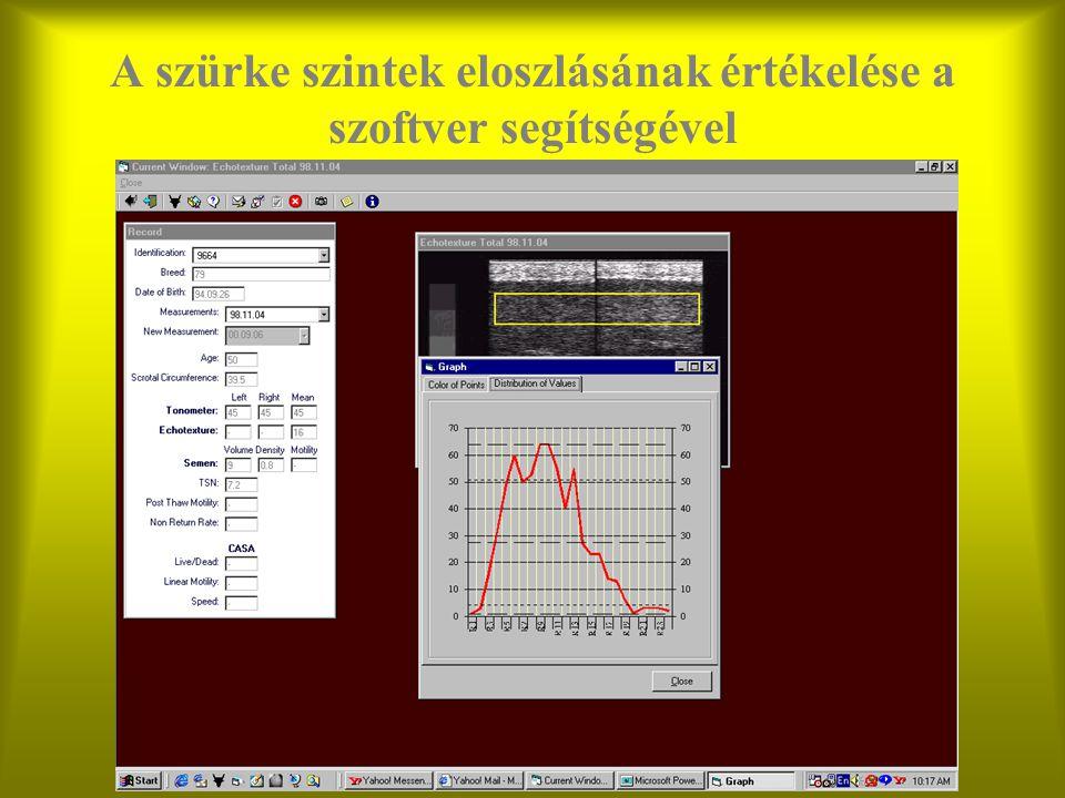 A szürke szintek eloszlásának értékelése a szoftver segítségével