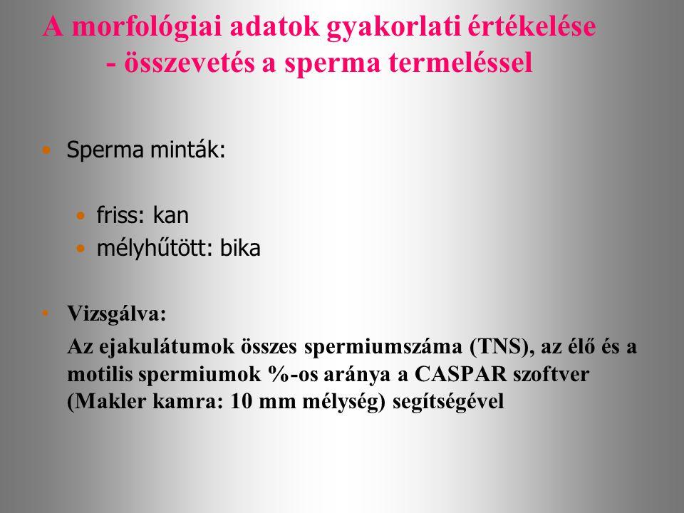 A morfológiai adatok gyakorlati értékelése - összevetés a sperma termeléssel Sperma minták: friss: kan mélyhűtött: bika Vizsgálva: Az ejakulátumok öss
