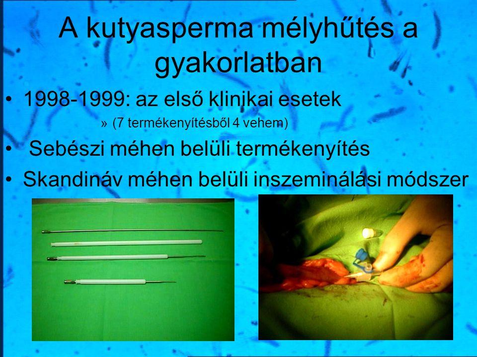 A kutyasperma mélyhűtés a gyakorlatban 1998-1999: az első klinikai esetek »(7 termékenyítésből 4 vehem) Sebészi méhen belüli termékenyítés Skandináv m