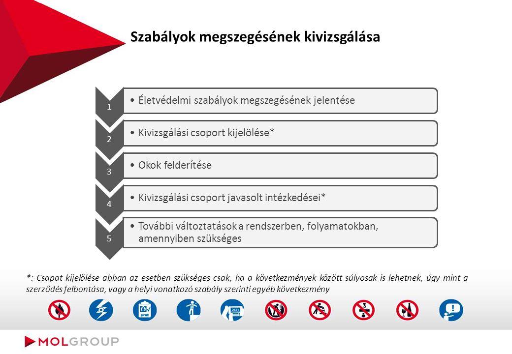 Szabályok megszegésének kivizsgálása 1 Életvédelmi szabályok megszegésének jelentése 2 Kivizsgálási csoport kijelölése* 3 Okok felderítése 4 Kivizsgál