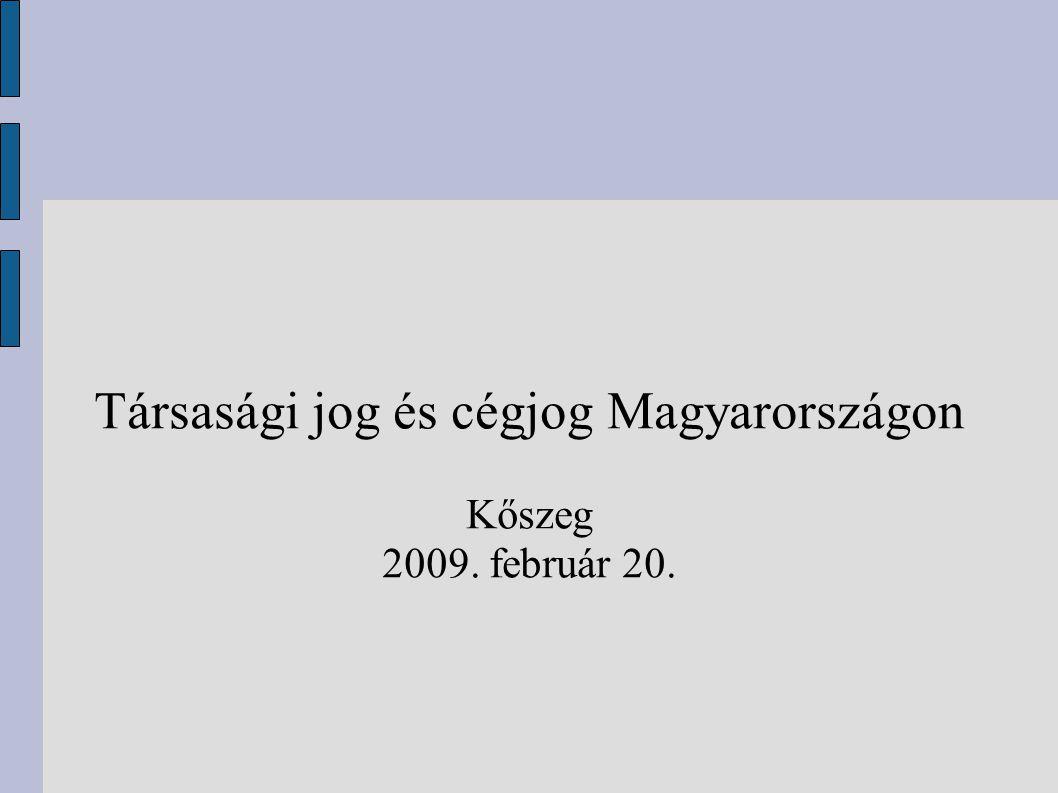 Társasági jog és cégjog Magyarországon Kőszeg 2009. február 20.