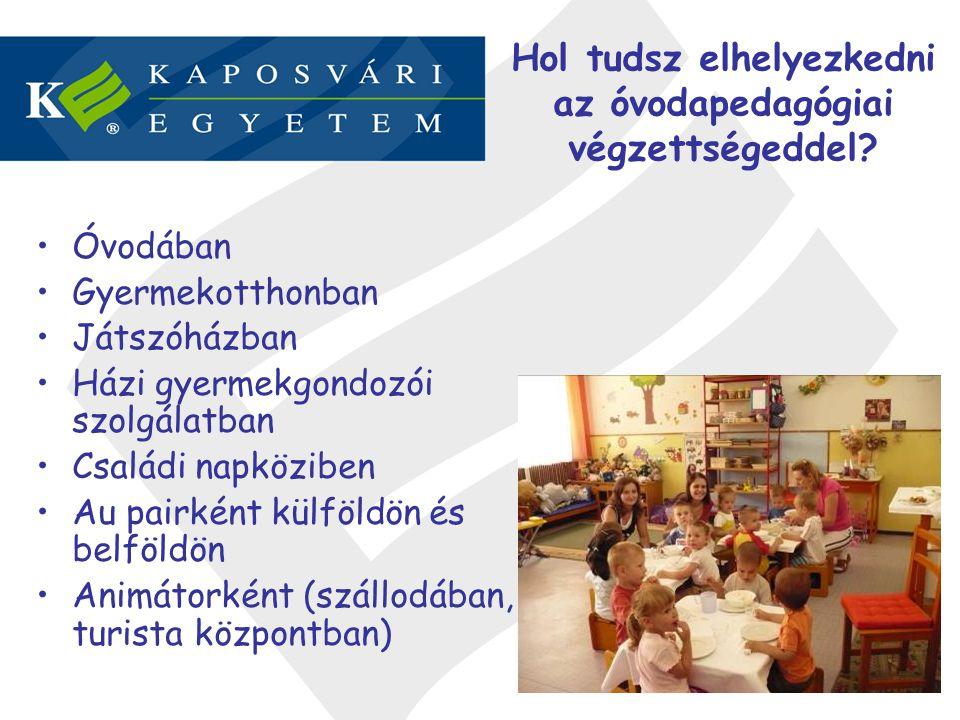 Óvodában Gyermekotthonban Játszóházban Házi gyermekgondozói szolgálatban Családi napköziben Au pairként külföldön és belföldön Animátorként (szállodáb