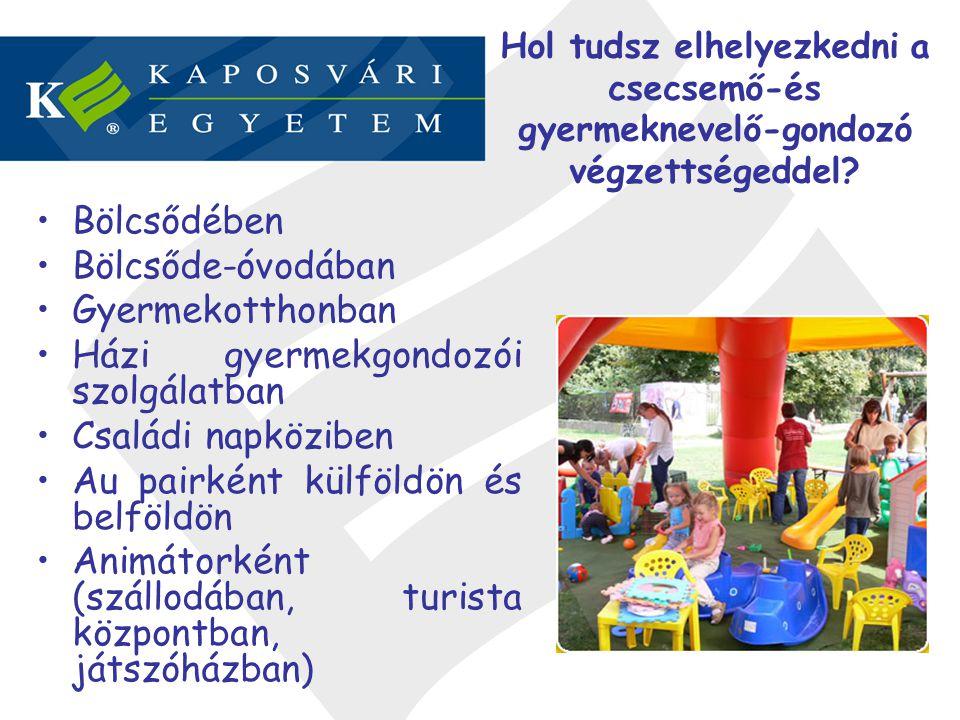 Bölcsődében Bölcsőde-óvodában Gyermekotthonban Házi gyermekgondozói szolgálatban Családi napköziben Au pairként külföldön és belföldön Animátorként (s