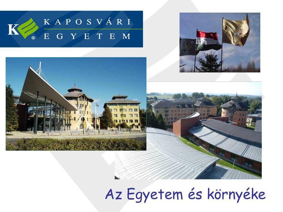 Az Egyetem és környéke