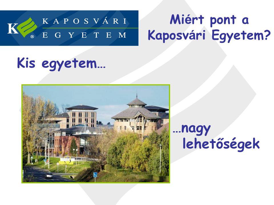 Mi é rt pont a Kaposv á ri Egyetem? Kis egyetem… …nagy lehetőségek