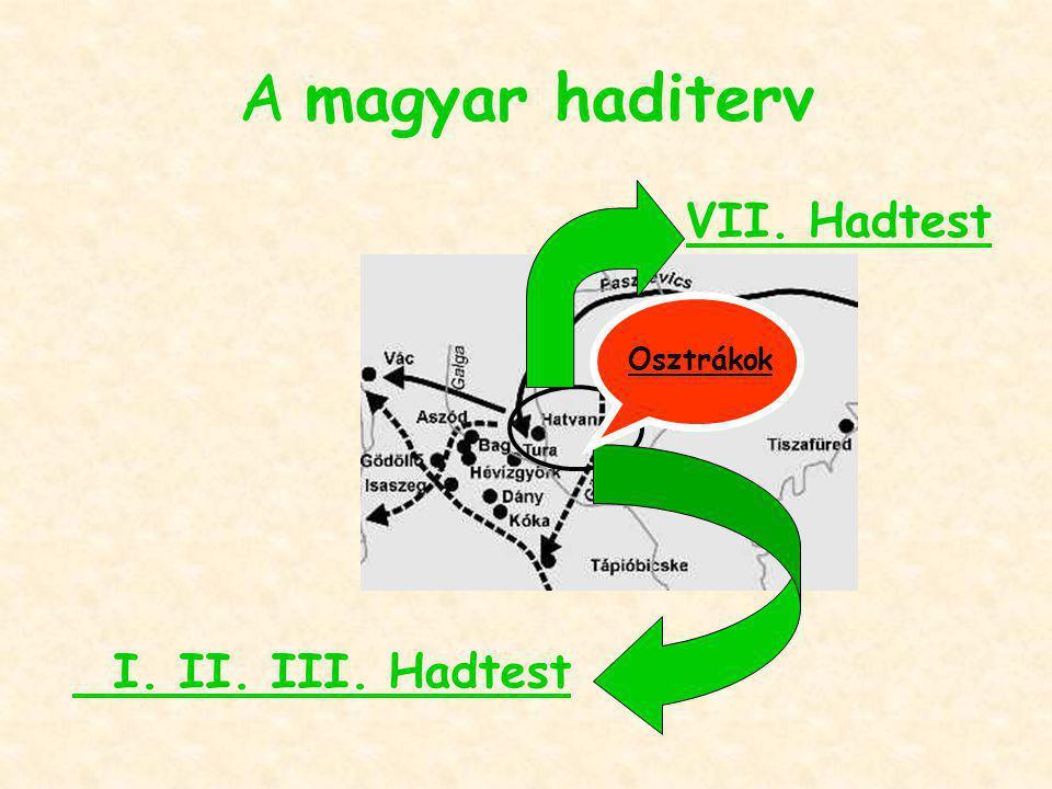 A magyar haditerv VII. Hadtest Osztrákok I. II. III. Hadtest