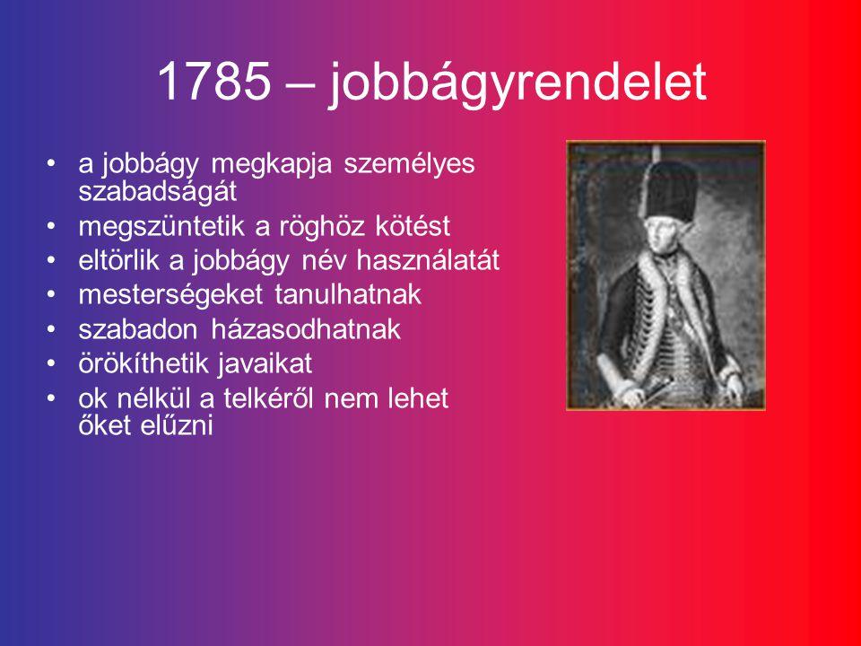 1785 – jobbágyrendelet a jobbágy megkapja személyes szabadságát megszüntetik a röghöz kötést eltörlik a jobbágy név használatát mesterségeket tanulhatnak szabadon házasodhatnak örökíthetik javaikat ok nélkül a telkéről nem lehet őket elűzni
