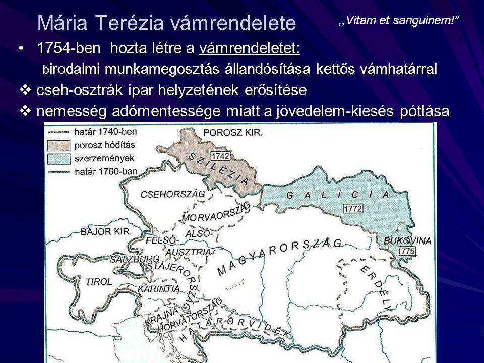 kettős vámhatár:kettős vámhatár:  külső vámhatár: birodalom köré  belső vámhatár: örökös tartományok és Magyarország közé  elválasztja Magyarországot Ausztriától és Csehországtól  cseh-osztrák ipar helyzetét erősíti  megbénítja a magyar ipar fejlődését