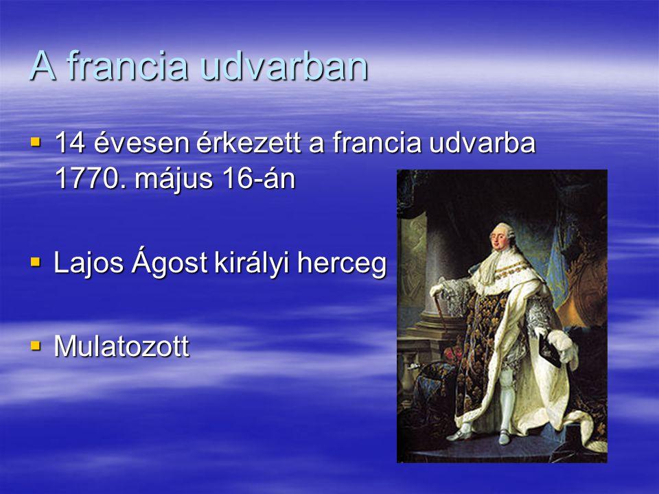 A francia udvarban  14 évesen érkezett a francia udvarba 1770. május 16-án  Lajos Ágost királyi herceg  Mulatozott