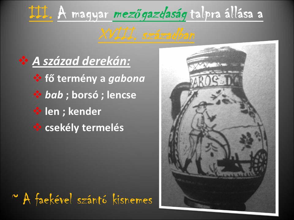 III.A magyar mez ő gazdaság talpra állása a XVIII.