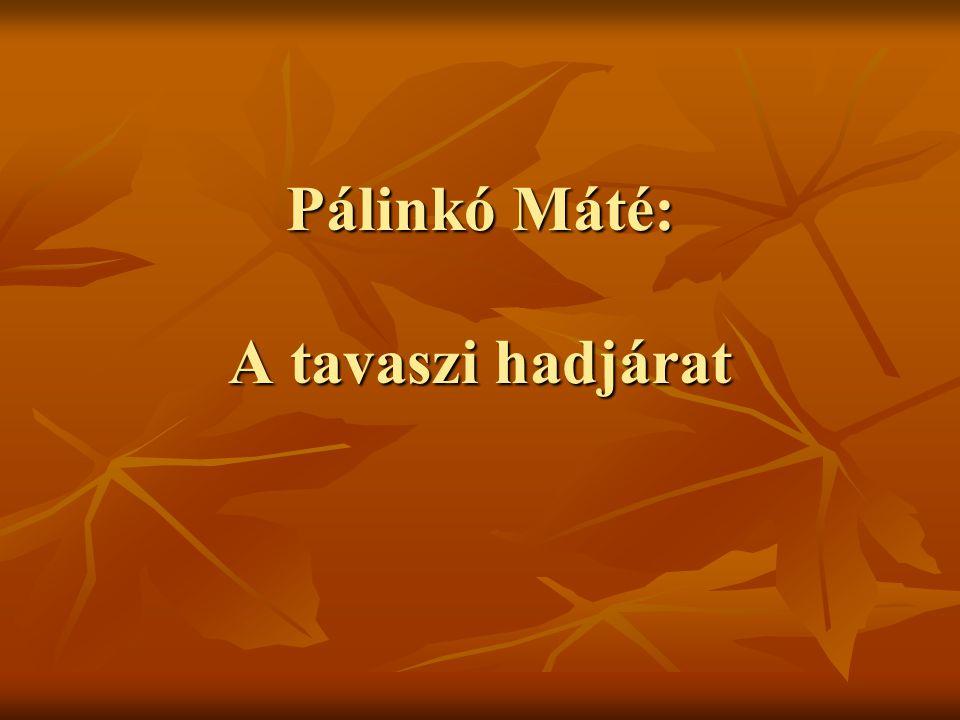 Pálinkó Máté: A tavaszi hadjárat