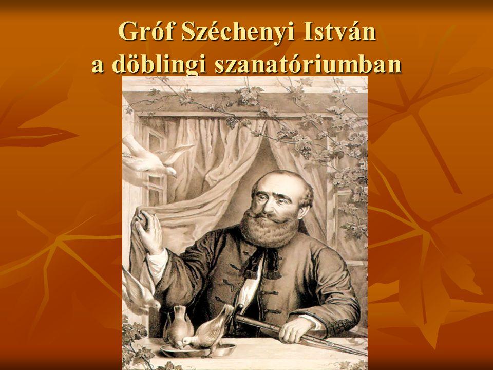 Gróf Széchenyi István a döblingi szanatóriumban