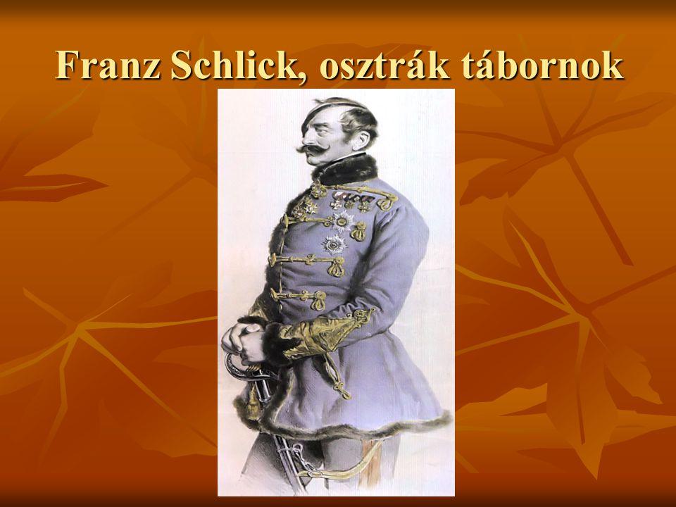 Két tűz közt: a temesvári csatavesztés