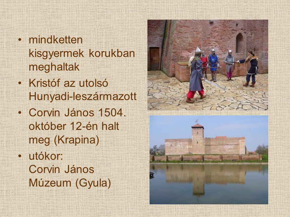 mindketten kisgyermek korukban meghaltak Kristóf az utolsó Hunyadi-leszármazott Corvin János 1504. október 12-én halt meg (Krapina) utókor: Corvin Ján