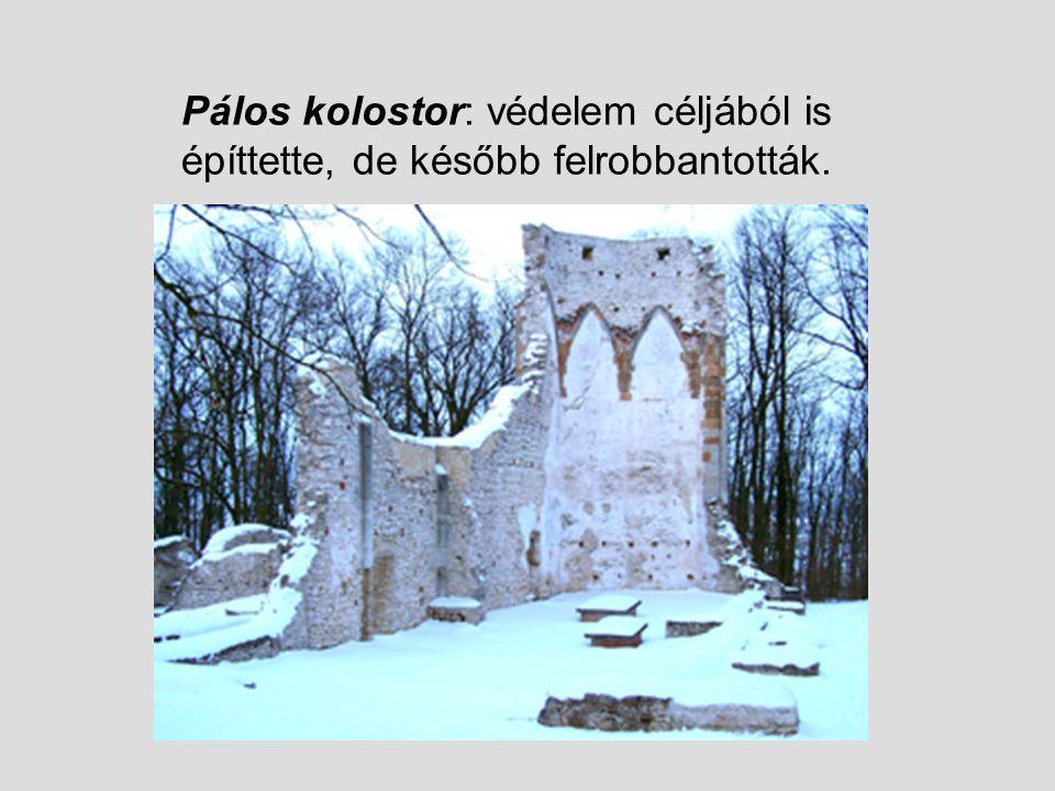 Benigna 1480 körül vette feleségül Kinizsi Pál hatalmas birtokokat örökölt Második férje: kamiczáni Myslenovith (Horváth) Márk Harmadik férje: Vázsonyi Kereki Gergely Zápolya János a birtokait elkoboztatta