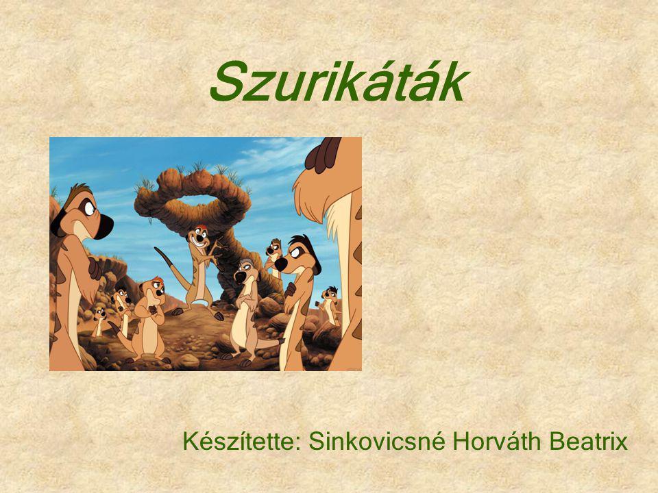 Készítette: Sinkovicsné Horváth Beatrix Szurikáták