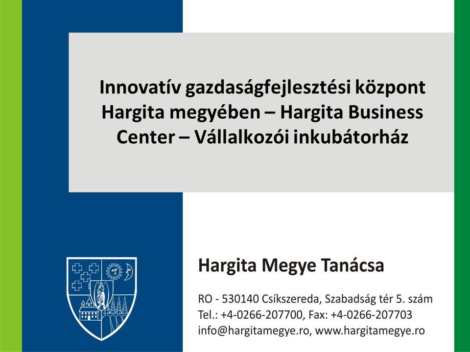 A projekt illeszkedése a megyei gazdasági környezetbe Hargita megye kedvezőtlen gazdaságföldrajzi pozíciója A helyi gazdaságszerkezet sajátosságai A nagyméretű vállalkozások alacsony száma és részesedése a foglalkoztatásban A megyei kkv-szektor lokális gazdaságban betöltött szerepének fontosságát hangsúlyozzák