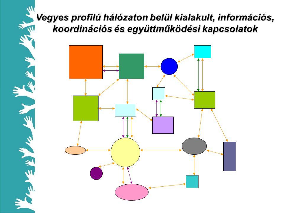 Vegyes profilú hálózaton belül kialakult, információs, koordinációs és együttműködési kapcsolatok