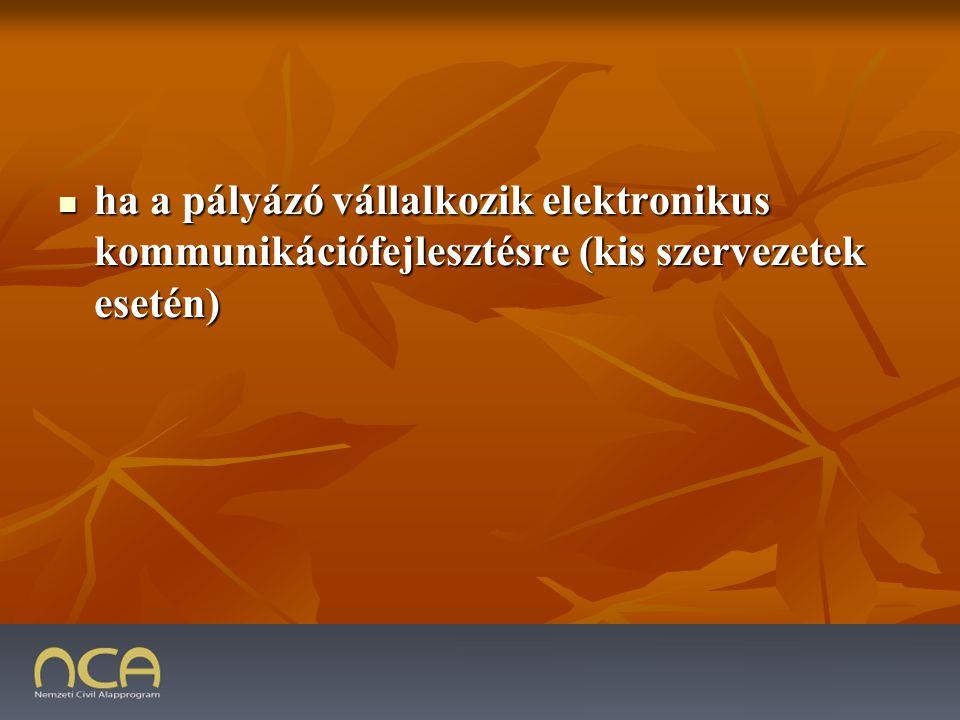 ha a pályázó vállalkozik elektronikus kommunikációfejlesztésre (kis szervezetek esetén) ha a pályázó vállalkozik elektronikus kommunikációfejlesztésre (kis szervezetek esetén) 2009.01.23.41