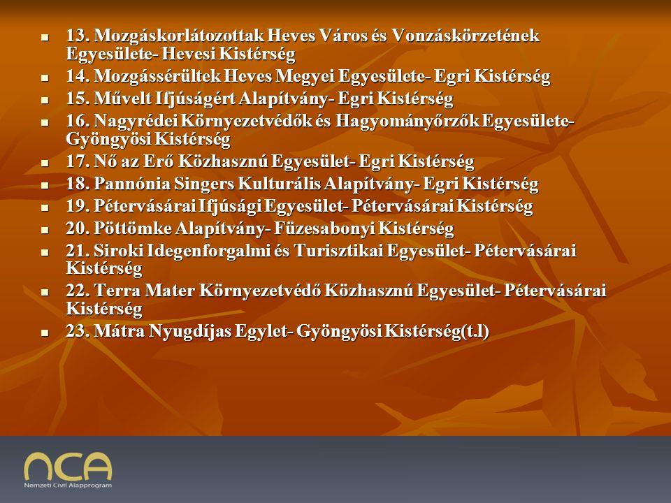 13. Mozgáskorlátozottak Heves Város és Vonzáskörzetének Egyesülete- Hevesi Kistérség 13.