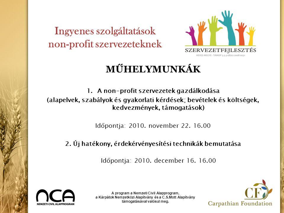 Ingyenes szolgáltatások non-profit szervezeteknek MŰHELYMUNKÁK 1.A non-profit szervezetek gazdálkodása (alapelvek, szabályok és gyakorlati kérdések; b