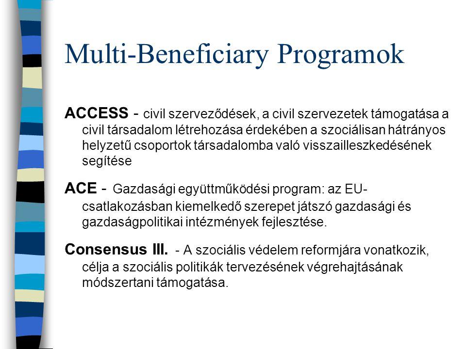Multi-Beneficiary Programok ACCESS - civil szerveződések, a civil szervezetek támogatása a civil társadalom létrehozása érdekében a szociálisan hátrányos helyzetű csoportok társadalomba való visszailleszkedésének segítése ACE - Gazdasági együttműködési program: az EU- csatlakozásban kiemelkedő szerepet játszó gazdasági és gazdaságpolitikai intézmények fejlesztése.