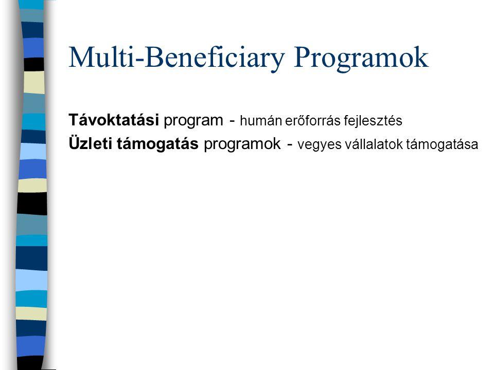 Multi-Beneficiary Programok Távoktatási program - humán erőforrás fejlesztés Üzleti támogatás programok - vegyes vállalatok támogatása