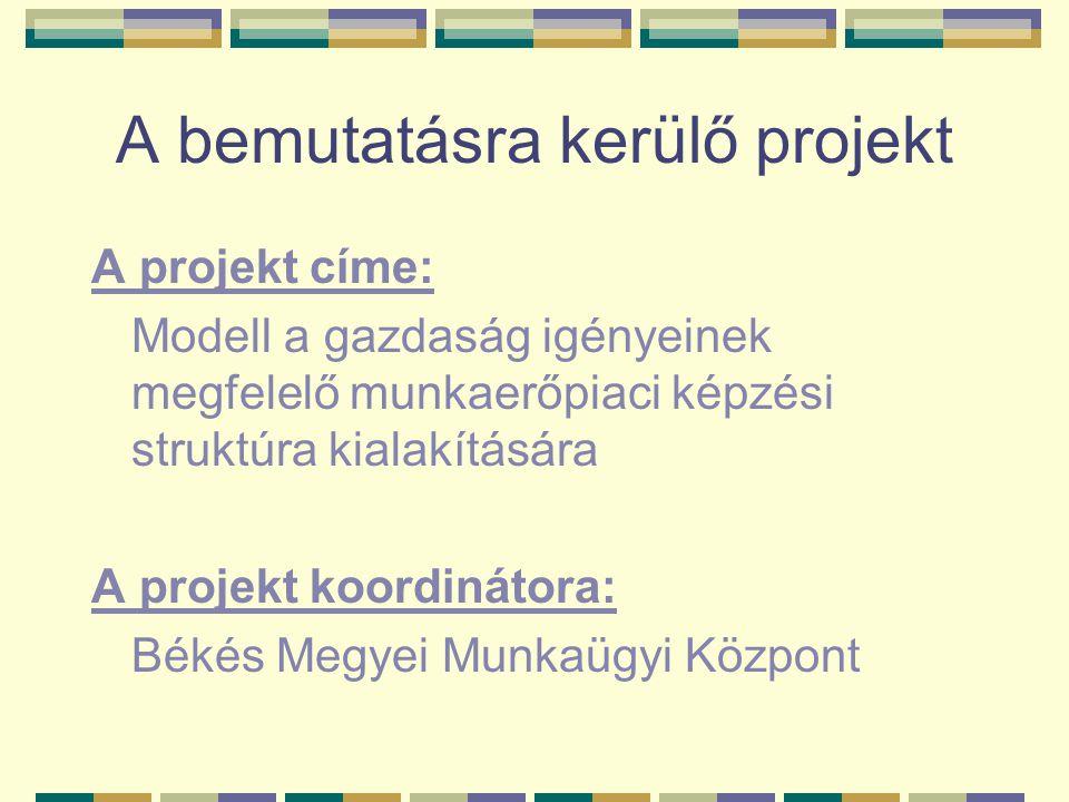 A bemutatásra kerülő projekt A projekt címe: Modell a gazdaság igényeinek megfelelő munkaerőpiaci képzési struktúra kialakítására A projekt koordinátora: Békés Megyei Munkaügyi Központ