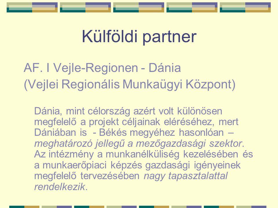 Külföldi partner AF. I Vejle-Regionen - Dánia (Vejlei Regionális Munkaügyi Központ) Dánia, mint célország azért volt különösen megfelelő a projekt cél