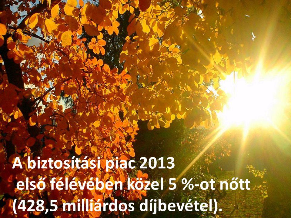 6 A biztosítási piac 2013 első félévében közel 5 %-ot nőtt (428,5 milliárdos díjbevétel)..