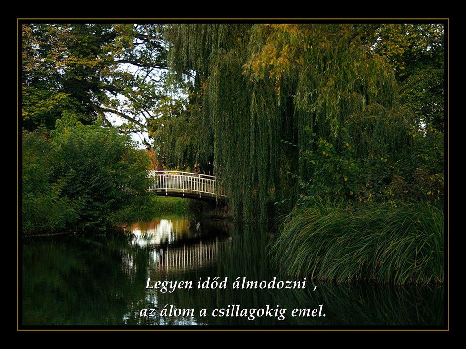 Legyen időd szeretni, a szeretet az élet áldása. a szeretet az élet áldása.